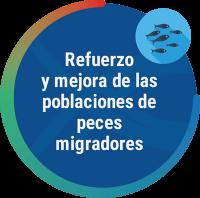 actividad-migra-3